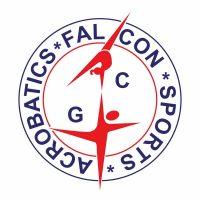 Falcon-logo-colour-web-ready